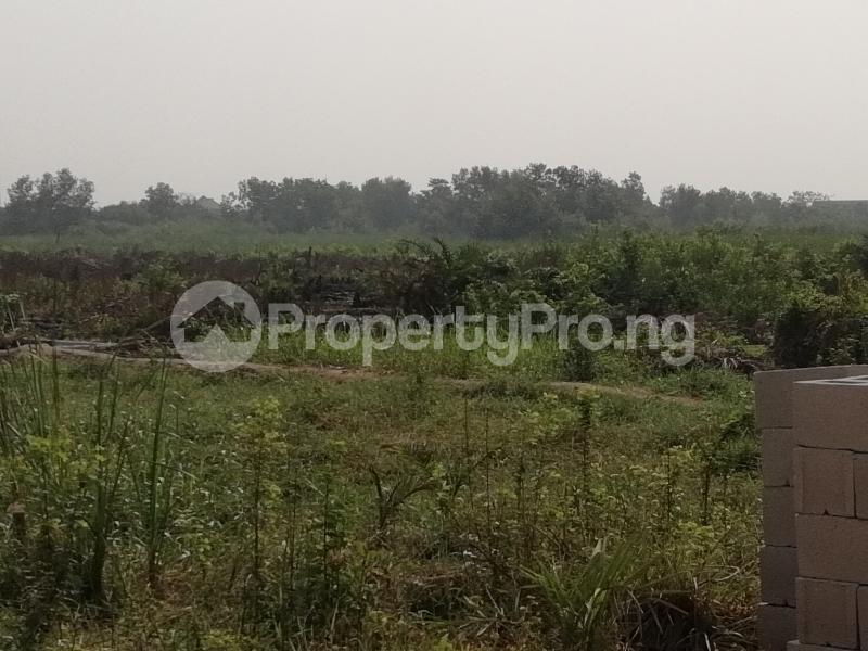 Mixed   Use Land Land for sale off Azagba Ogwashi-Ukwu Polytechnic Road Aniocha South Delta - 0