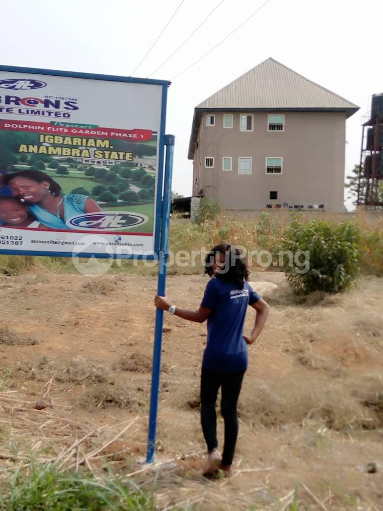 Mixed   Use Land Land for sale Anambra East Anambra - 3