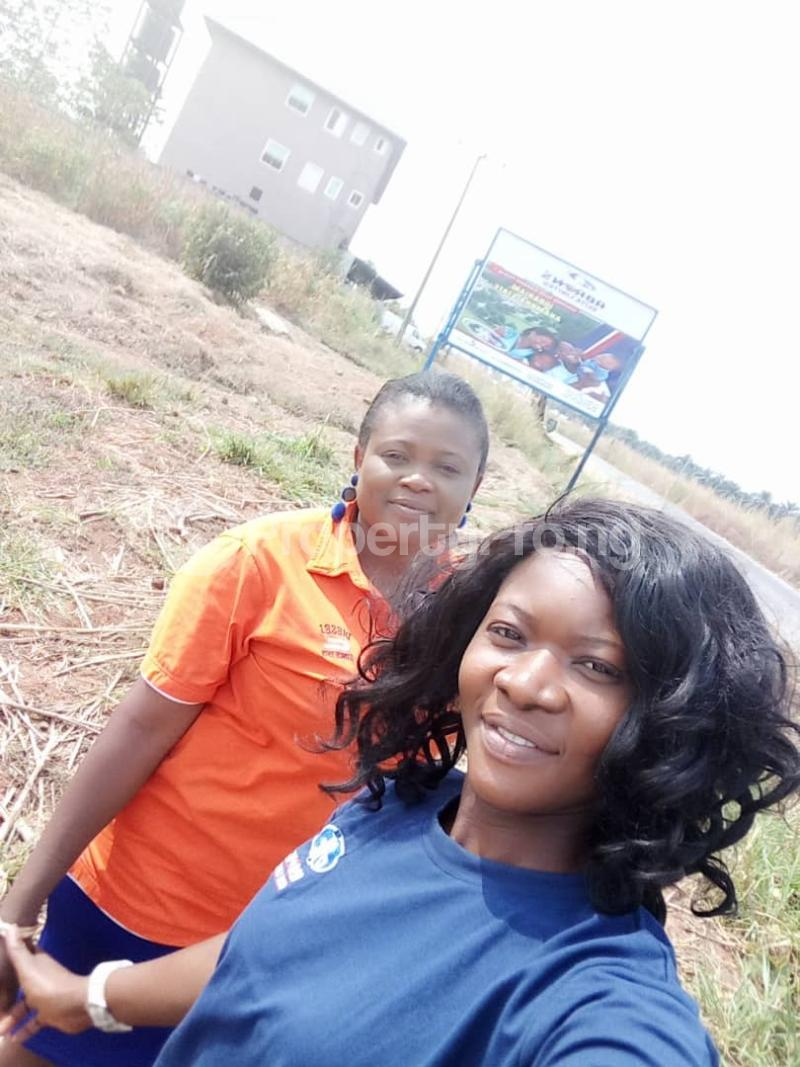 Mixed   Use Land Land for sale Anambra East Anambra - 4