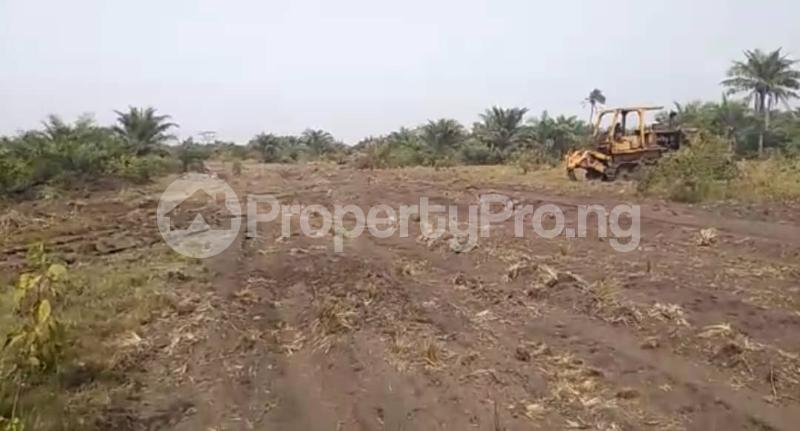 Mixed   Use Land Land for sale Okun Imosan, Southern Atlantic Estate LaCampaigne Tropicana Ibeju-Lekki Lagos - 10