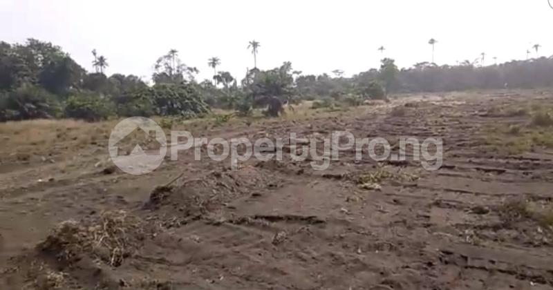 Mixed   Use Land Land for sale Okun Imosan, Southern Atlantic Estate LaCampaigne Tropicana Ibeju-Lekki Lagos - 7