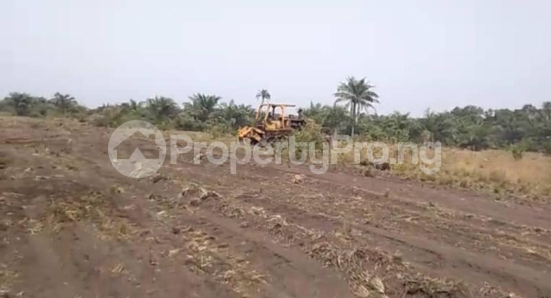 Mixed   Use Land Land for sale Okun Imosan, Southern Atlantic Estate LaCampaigne Tropicana Ibeju-Lekki Lagos - 8