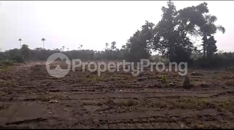 Mixed   Use Land Land for sale Okun Imosan, Southern Atlantic Estate LaCampaigne Tropicana Ibeju-Lekki Lagos - 5
