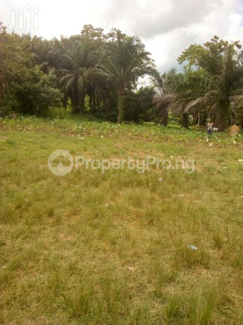 Mixed   Use Land Land for sale Epe community area, along ife garage Road, Ondo Town, ondo state Ondo East Ondo - 0