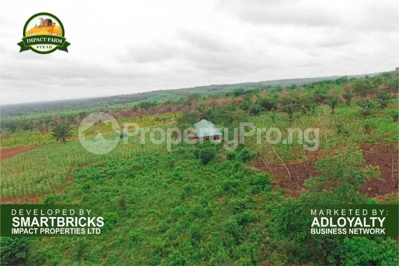 Commercial Land Land for sale Mokoloki via Mowe - Ofada , Impact Farm Stead Estate. Mokoloki Obafemi Owode Ogun - 5