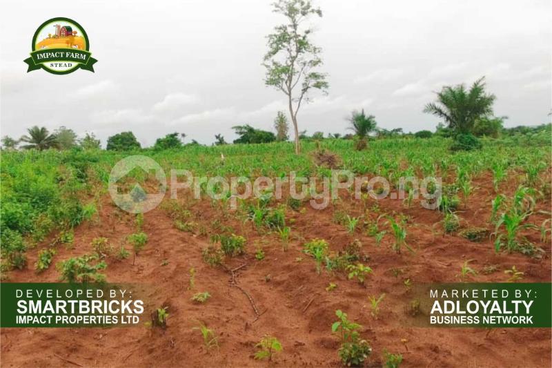 Commercial Land Land for sale Mokoloki via Mowe - Ofada , Impact Farm Stead Estate. Mokoloki Obafemi Owode Ogun - 2