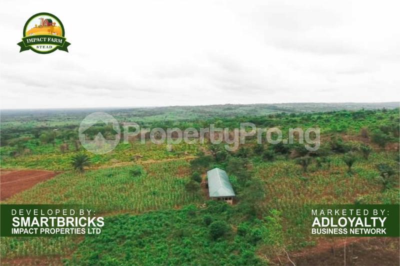 Commercial Land Land for sale Mokoloki via Mowe - Ofada , Impact Farm Stead Estate. Mokoloki Obafemi Owode Ogun - 1