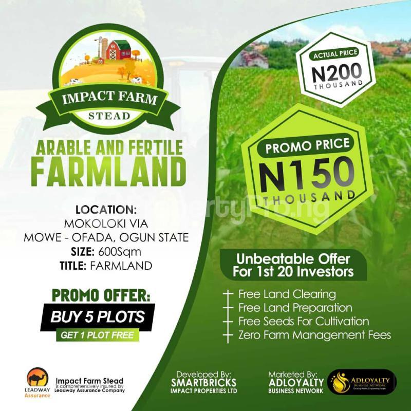 Commercial Land Land for sale Mokoloki via Mowe - Ofada , Impact Farm Stead Estate. Mokoloki Obafemi Owode Ogun - 7