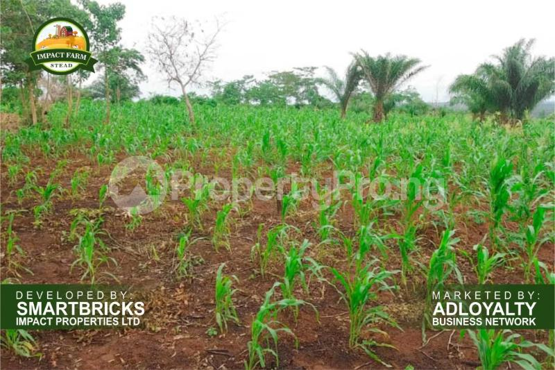 Commercial Land Land for sale Mokoloki via Mowe - Ofada , Impact Farm Stead Estate. Mokoloki Obafemi Owode Ogun - 4