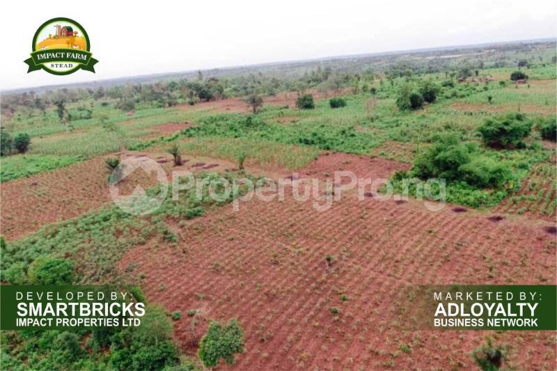 Commercial Land Land for sale Mokoloki via Mowe - Ofada , Impact Farm Stead Estate. Mokoloki Obafemi Owode Ogun - 0