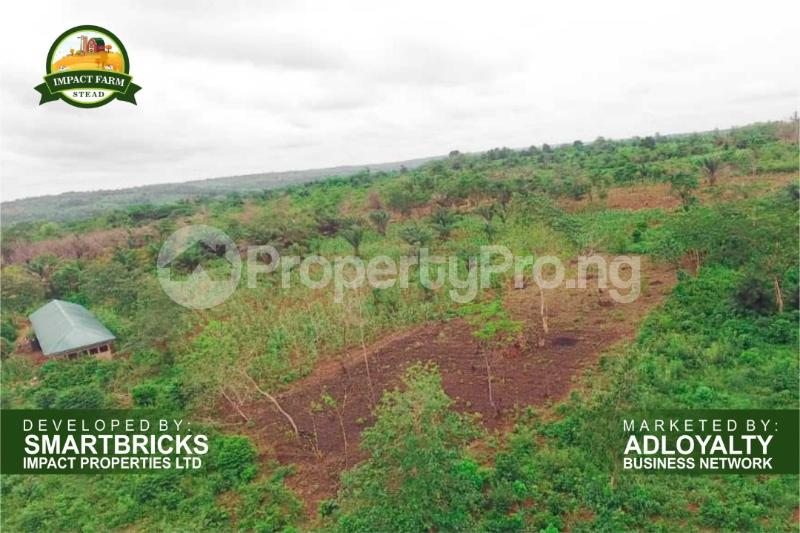 Commercial Land Land for sale Mokoloki via Mowe - Ofada , Impact Farm Stead Estate. Mokoloki Obafemi Owode Ogun - 3