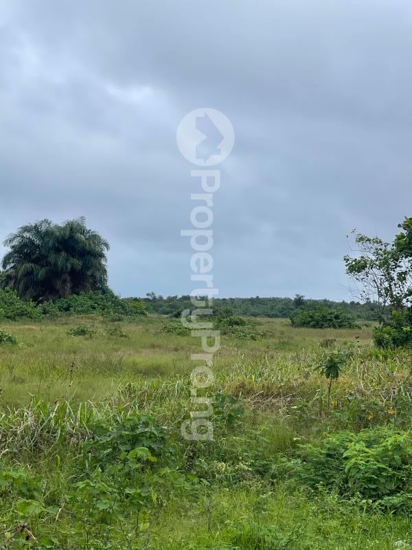 Mixed   Use Land for sale Akure Ondo - 1