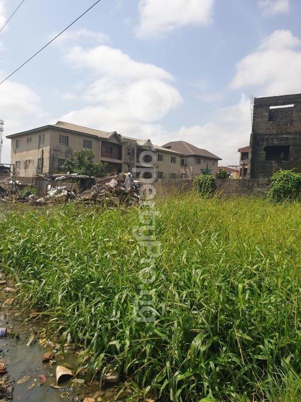 Mixed   Use Land Land for sale Babs Animashaun Street  Bode Thomas Surulere Lagos - 0