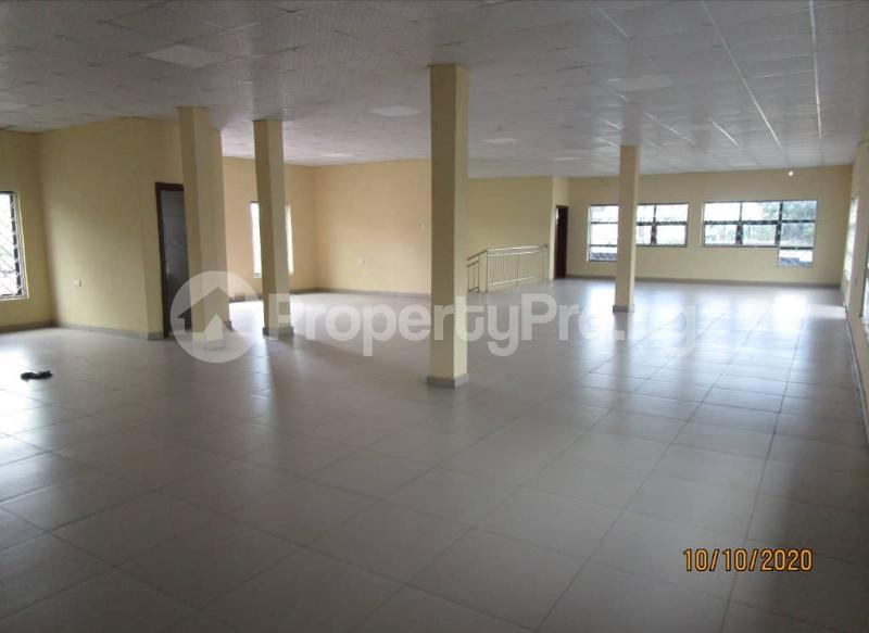 Office Space Commercial Property for rent Murtala Mohammed International Airport Access Road Airport Road(Ikeja) Ikeja Lagos - 3