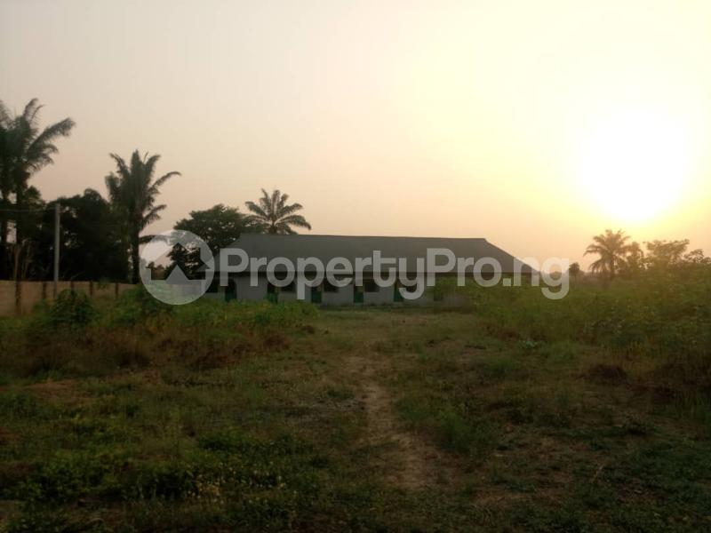 Residential Land Land for sale Eboyi State University  Ebonyi Ebonyi - 12