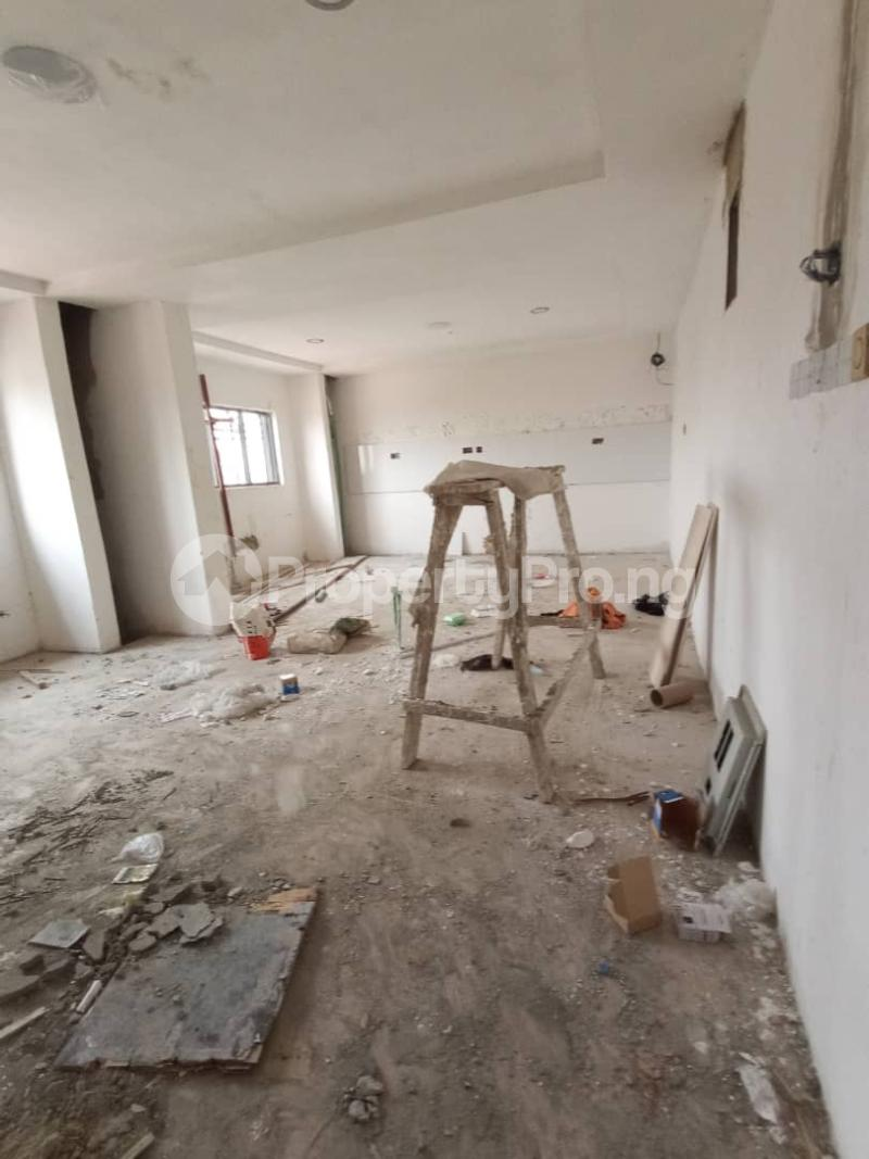 4 bedroom Penthouse Flat / Apartment for sale Ikoyi Lagos - 15
