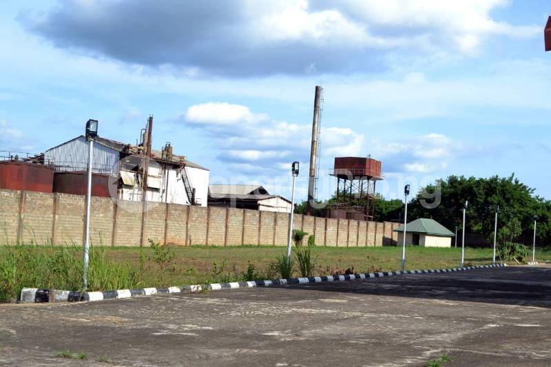 Commercial Property for sale Along Benin Express Road Owo Owo Ondo - 9