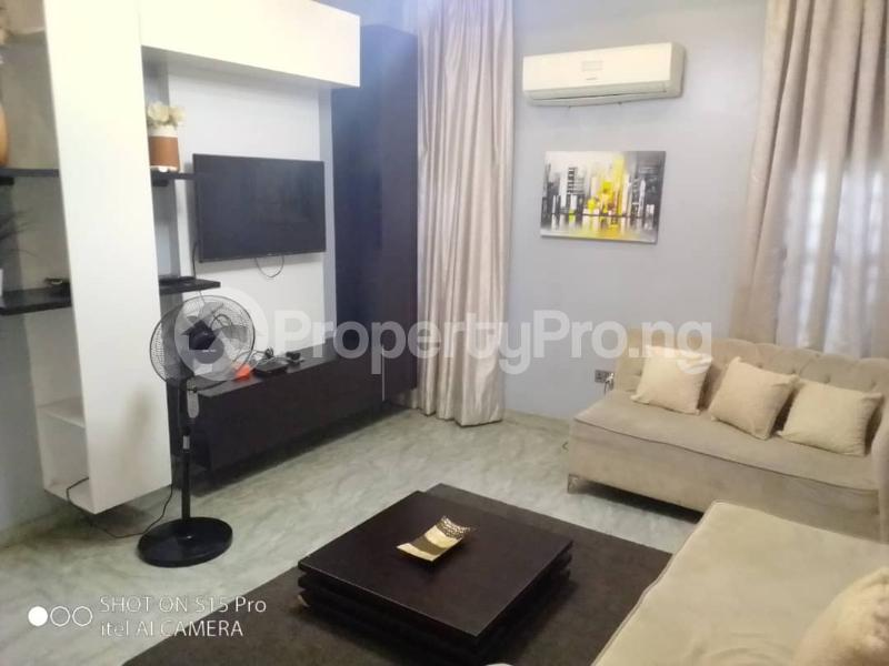 2 bedroom Self Contain Flat / Apartment for shortlet Adeniran Ogunsanya Surulere Lagos - 15