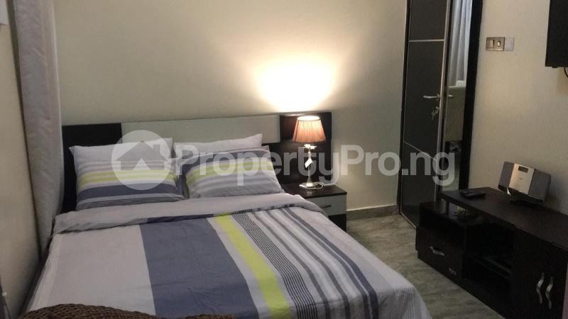 2 bedroom Self Contain Flat / Apartment for shortlet Adeniran Ogunsanya Surulere Lagos - 10
