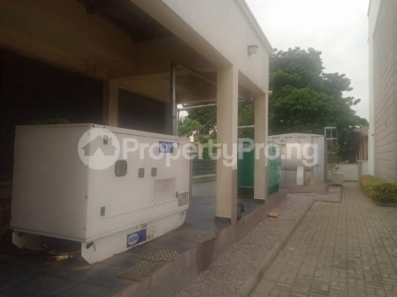 5 bedroom Massionette for rent Maitama Fct Abuja Maitama Abuja - 17