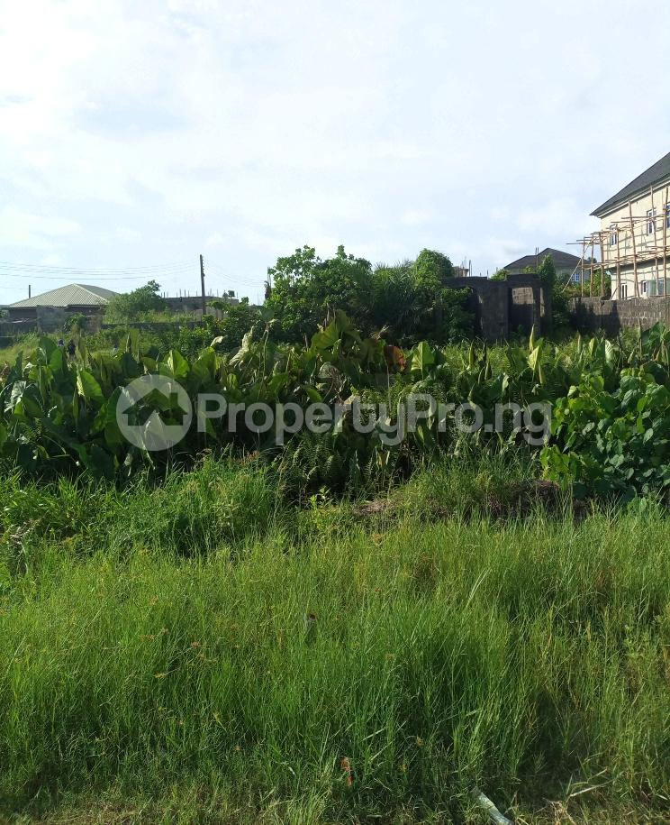 Mixed   Use Land for sale Serene And Secure Estate Abijo Gra Area Abijo Ajah Lagos - 4