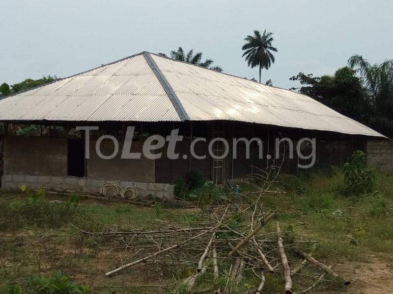 Land for sale Okomoko Etche Rivers - 2