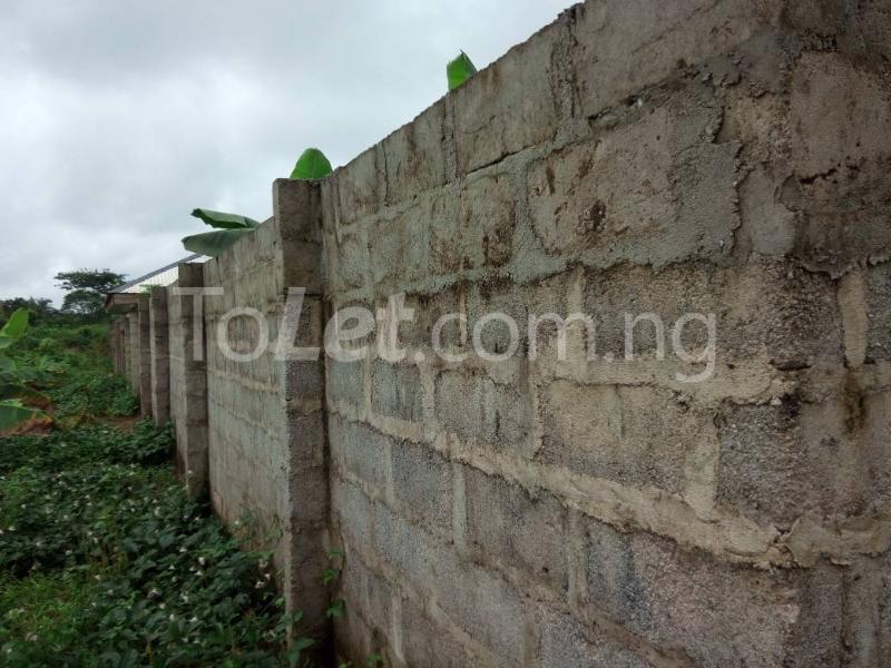 Land for sale Okomoko Etche Rivers - 4