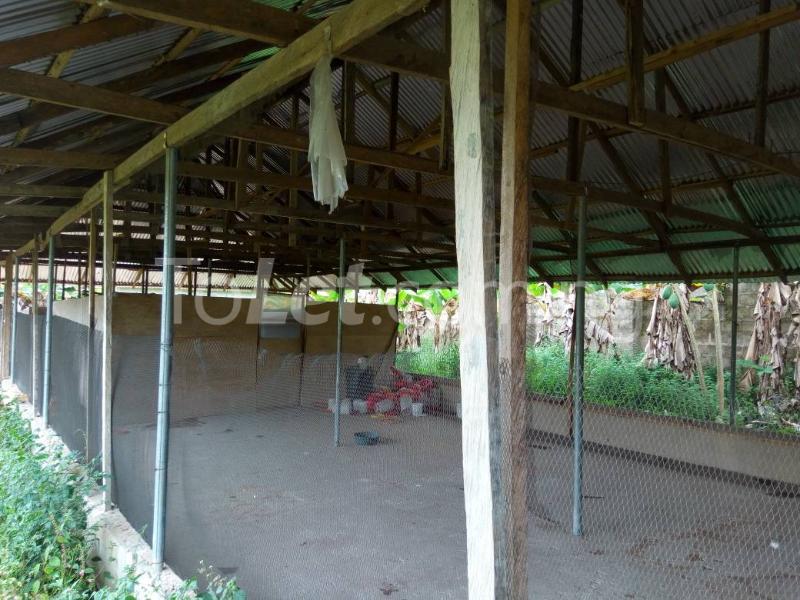 Land for sale Okomoko Etche Rivers - 6