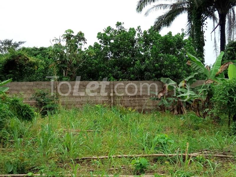 Land for sale Okomoko Etche Rivers - 7