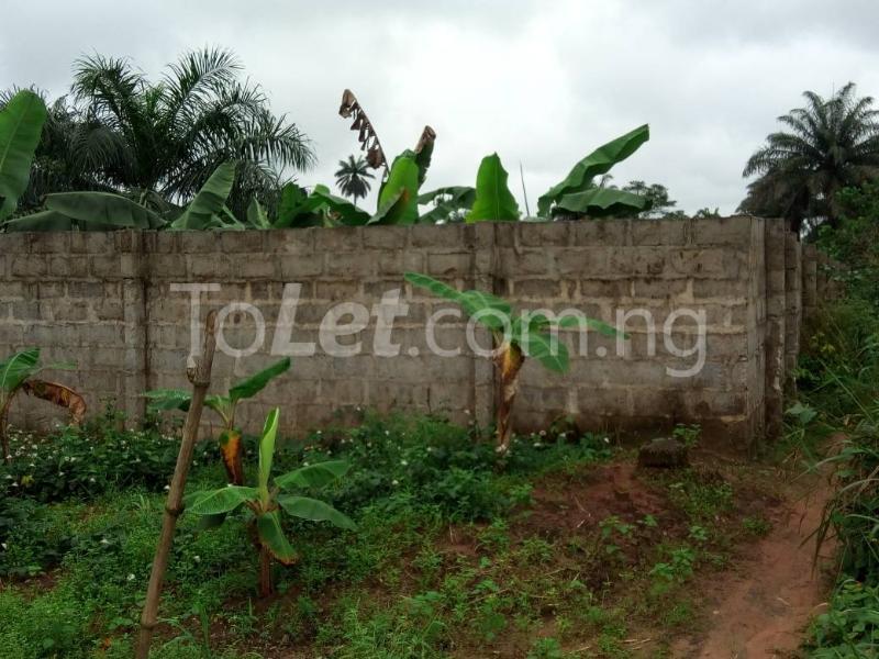 Land for sale Okomoko Etche Rivers - 5
