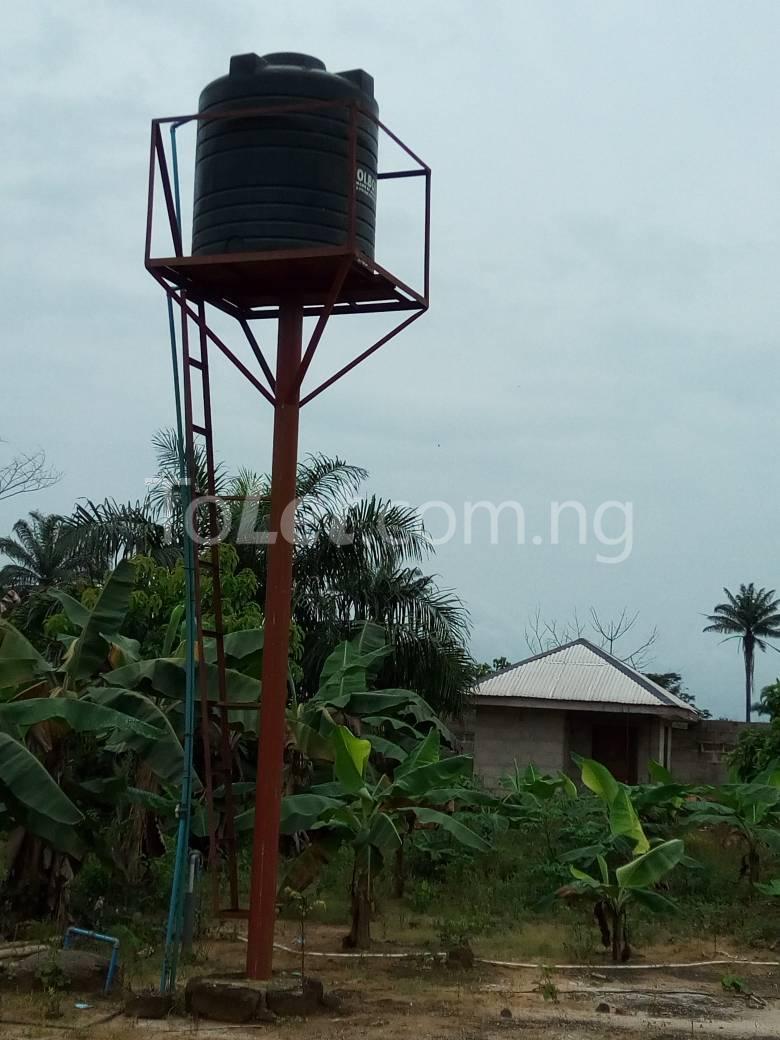 Land for sale Okomoko Etche Rivers - 1
