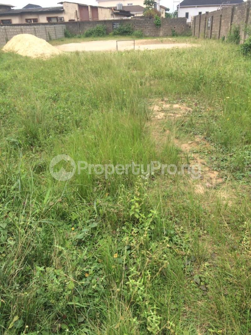 Mixed   Use Land for sale Lagoon View Estate Ebute Ikorodu Lagos - 3