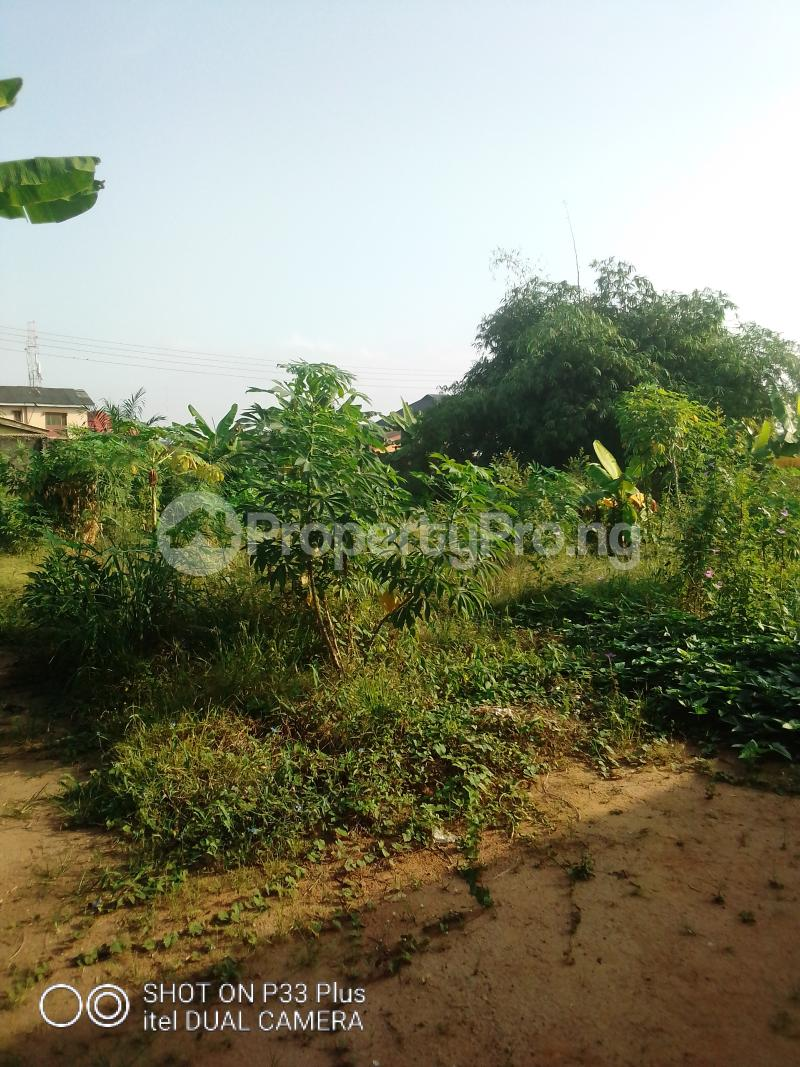 Mixed   Use Land Land for sale Megida ogunbewon str Onimaba estate Igando Ikotun/Igando Lagos - 0