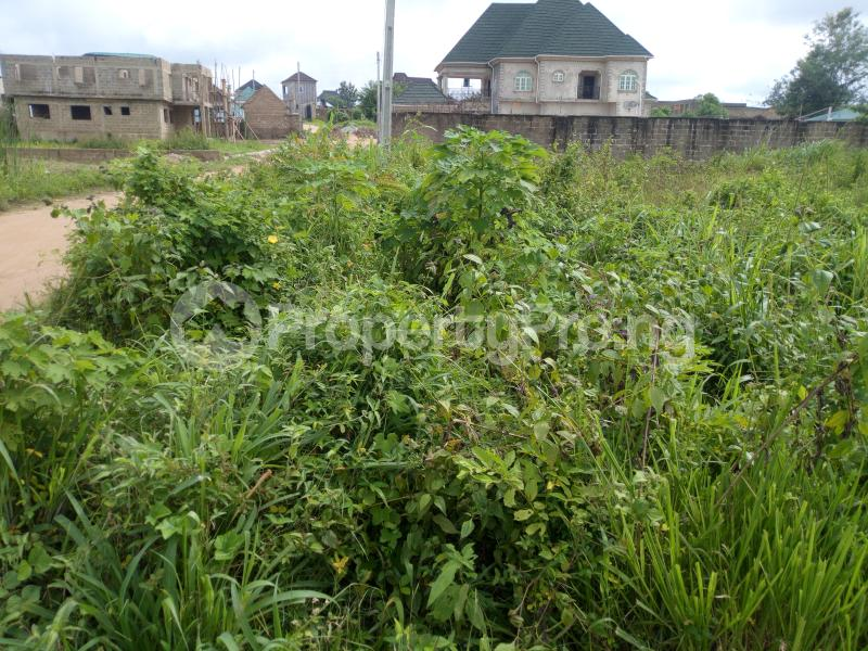 Residential Land Land for sale Elebu akala express way Akala Express Ibadan Oyo - 1