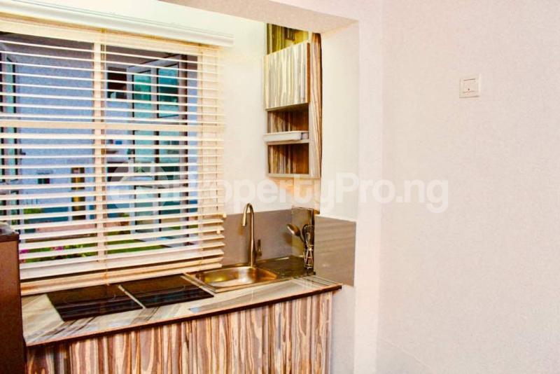 1 bedroom mini flat  Flat / Apartment for shortlet - Old Ikoyi Ikoyi Lagos - 8