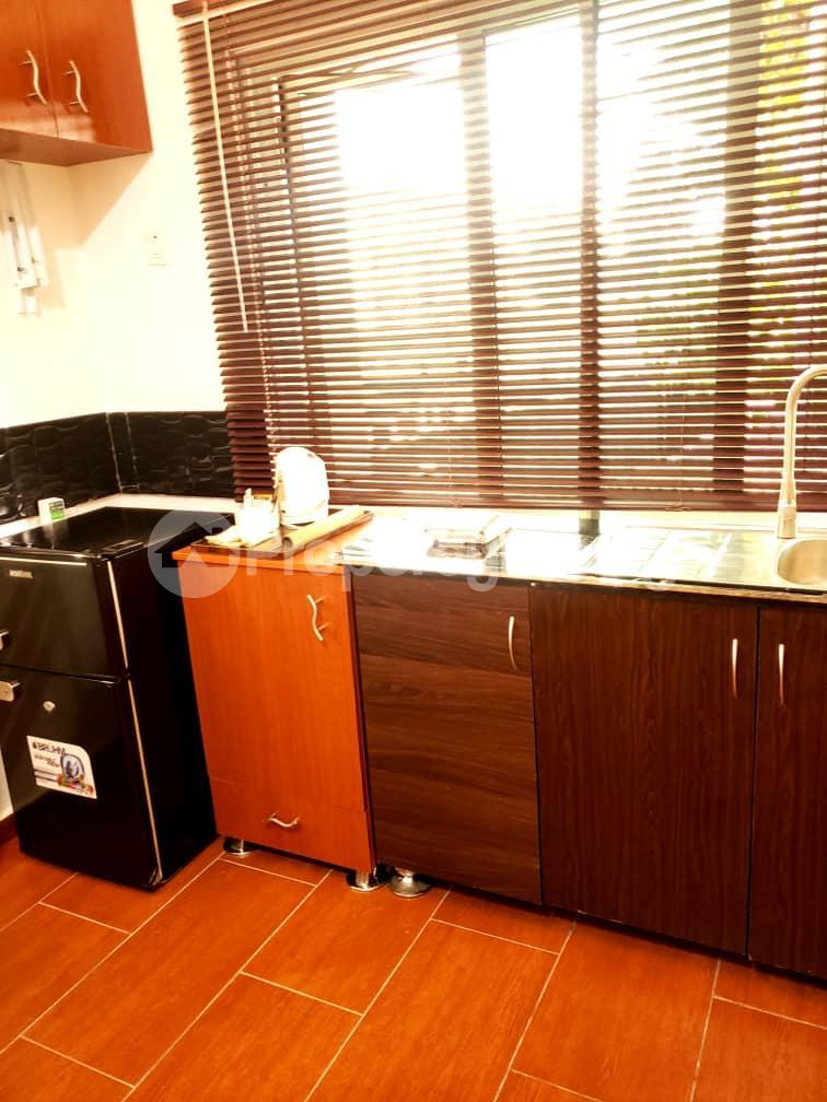 1 bedroom mini flat  Flat / Apartment for shortlet - Old Ikoyi Ikoyi Lagos - 21