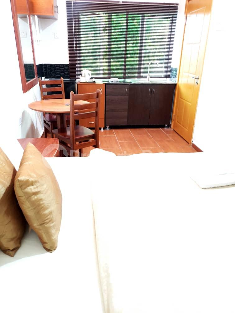 1 bedroom mini flat  Flat / Apartment for shortlet - Old Ikoyi Ikoyi Lagos - 9