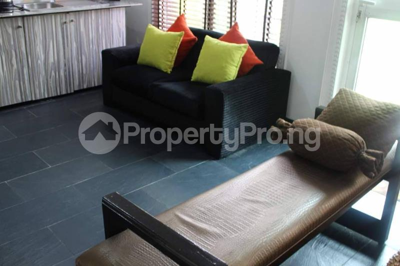 1 bedroom mini flat  Flat / Apartment for shortlet - Old Ikoyi Ikoyi Lagos - 13