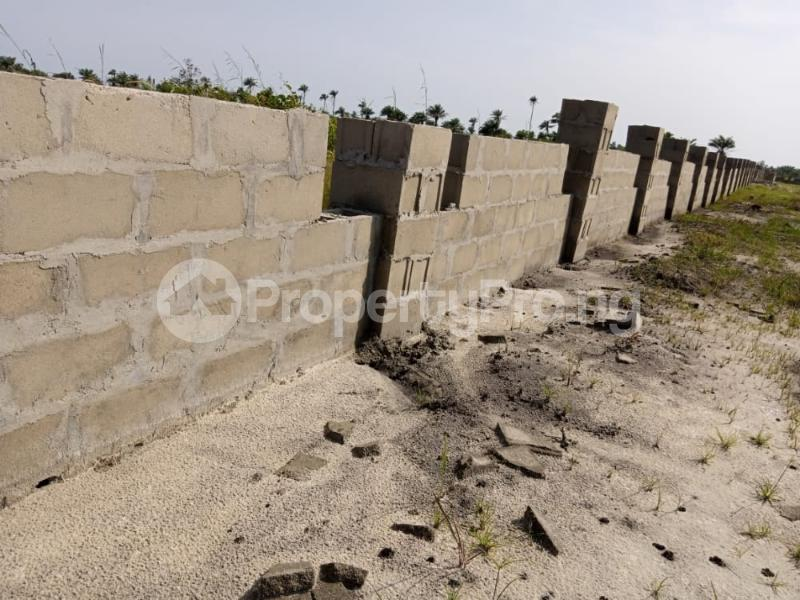 Mixed   Use Land Land for sale Isiki,Ode-Omi Free Trade Zone Ibeju-Lekki Lagos - 1