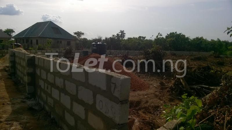 Land for sale Federal Polytechnic Nekede Back Gate Hostels Imo - 2