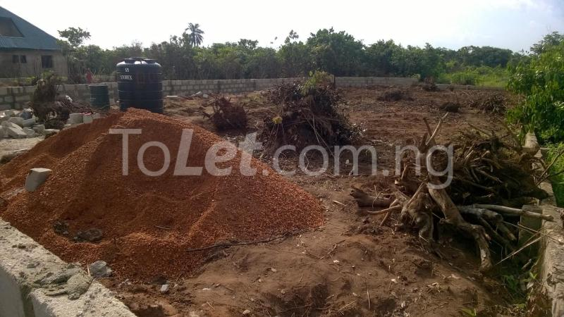 Land for sale Federal Polytechnic Nekede Back Gate Hostels Imo - 3