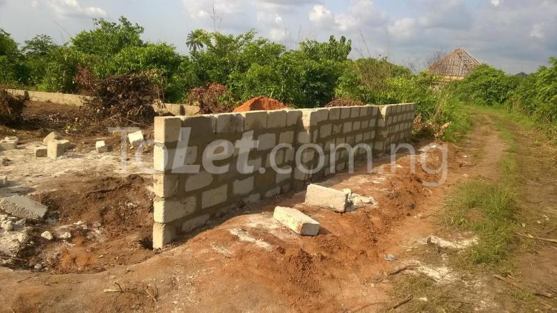 Land for sale Federal Polytechnic Nekede Back Gate Hostels Imo - 5