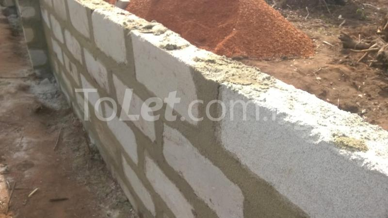 Land for sale Federal Polytechnic Nekede Back Gate Hostels Imo - 6