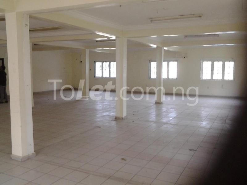 Commercial Property for rent Aguiyi Ironsi Street, Maitama, Abuja Maitama Abuja - 2