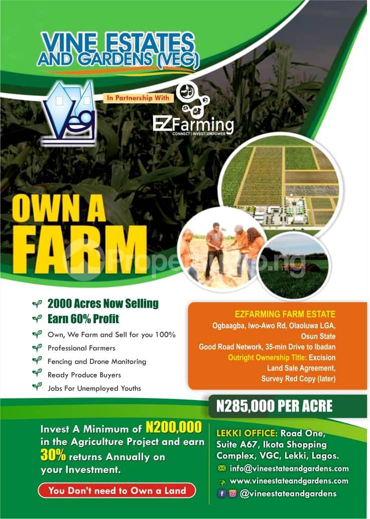 Commercial Land Land for sale Iwo Awo Road Ola-Oluwa Osun - 1