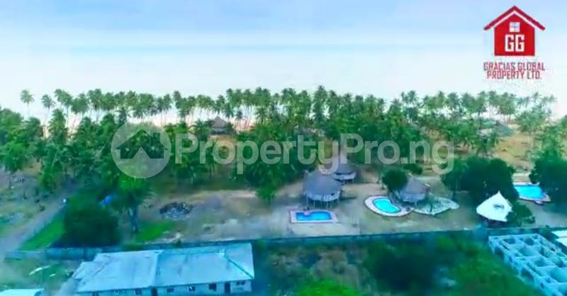 Mixed   Use Land for sale Akodo Ise Ibeju Lekki., After Free Trade Zone, Eleko Beach Eleko Ibeju-Lekki Lagos - 4