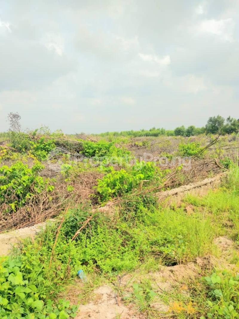 Mixed   Use Land for sale Opp. Fara Park Estate, Off Lekki Epe Expressway Sangotedo Ajah Lagos - 4