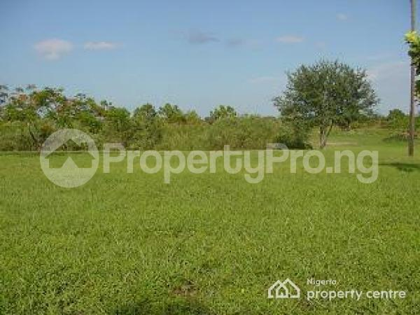 Mixed   Use Land Land for sale Oshimili Delta - 0