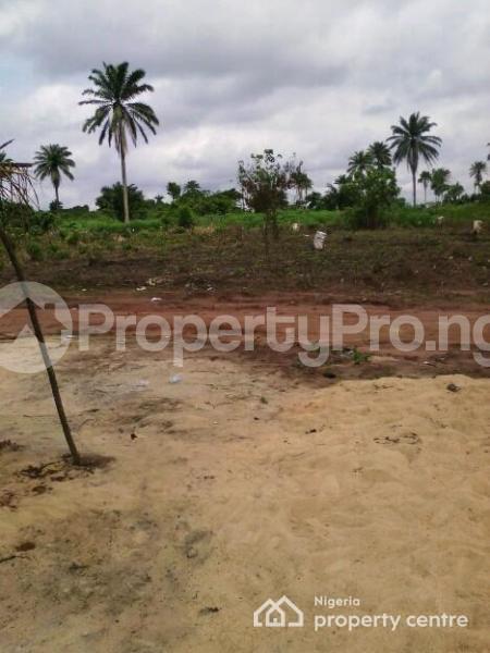Mixed   Use Land Land for sale Oshimili Delta - 1