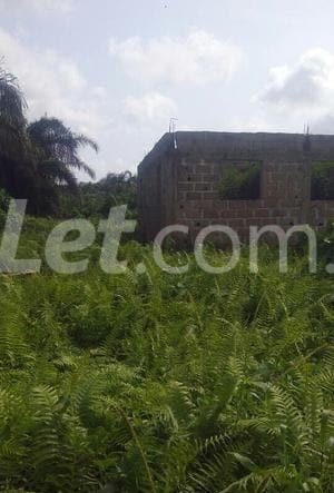 Residential Land Land for sale Akpabuyo Calabar Cross River - 1